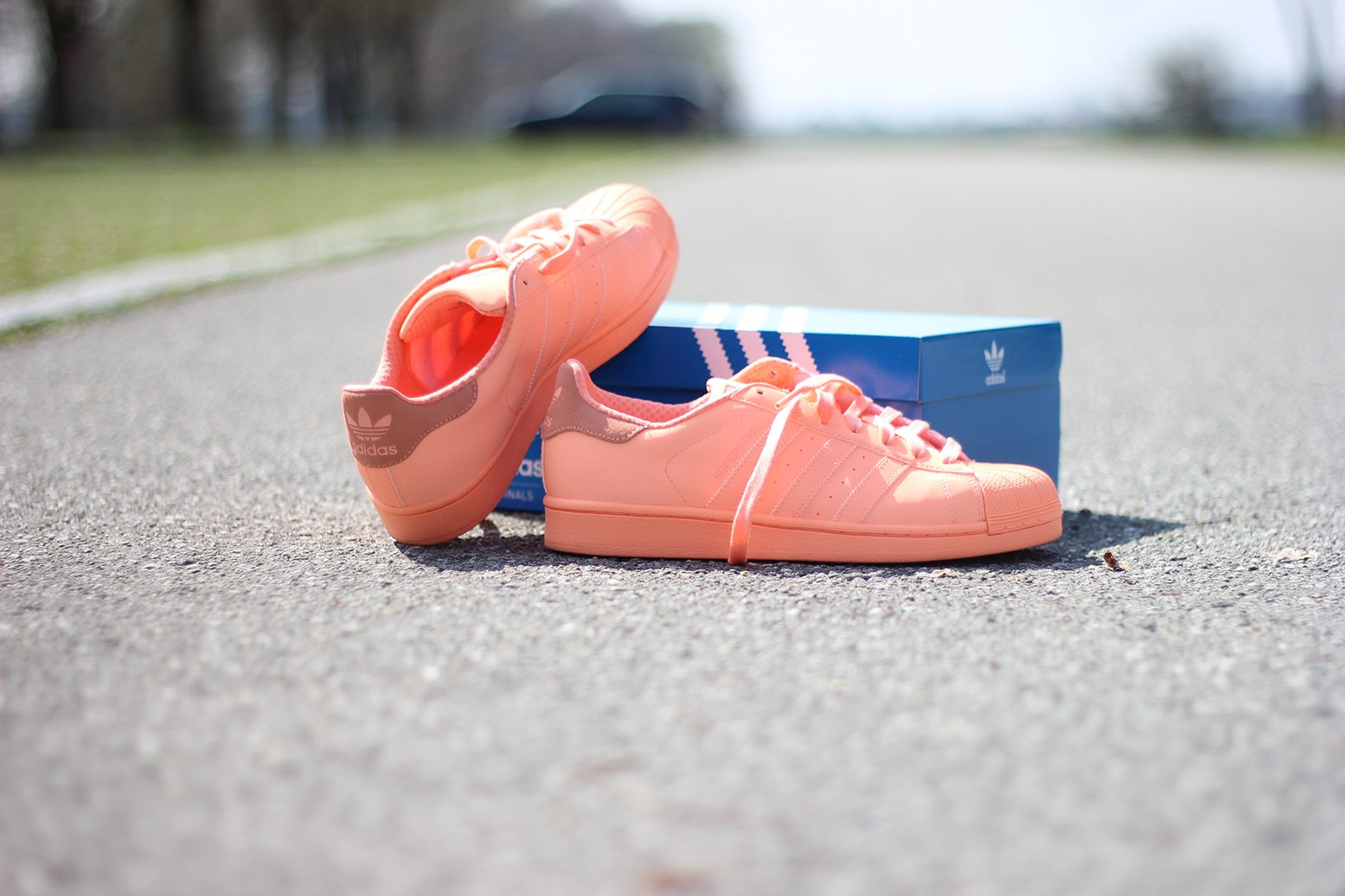 Adidas Superstars, Sneakers, sunglow, hellblau, streifen, Hut