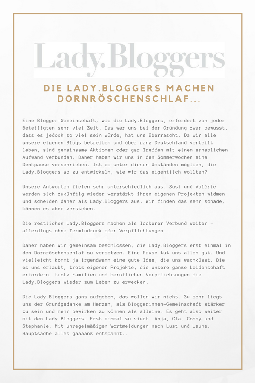 Ladybloggers, Statement