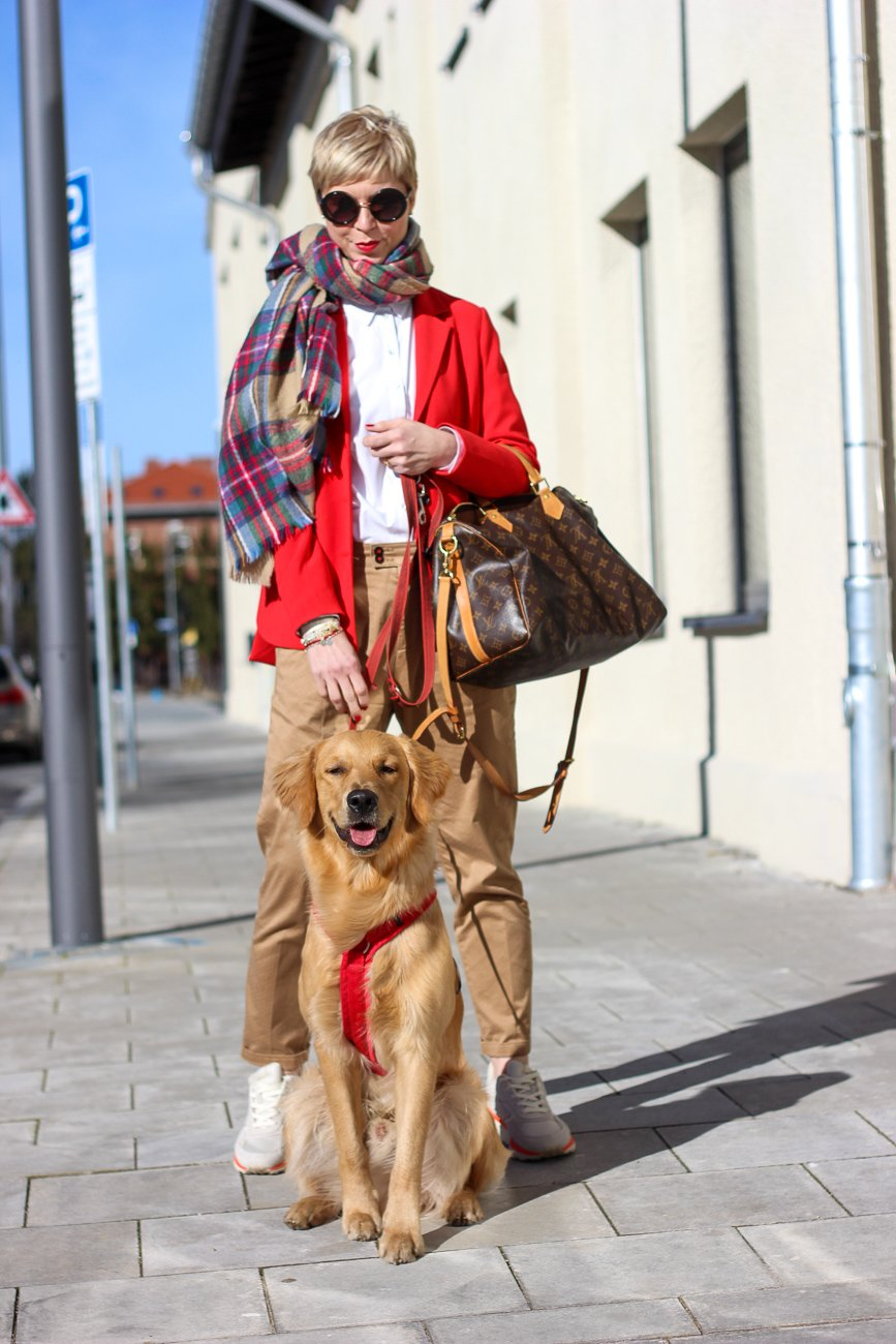 conny doll lifestyle: Businesslook, Blazer, Bluse, casual Business, Fashionblogger mit Hund