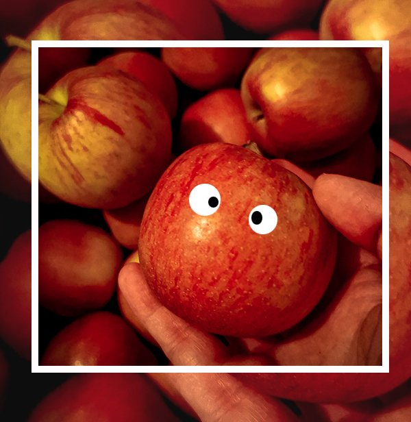 conny doll lifestyle: Äpfel, Apfelkauf, Haustürgeschäft,